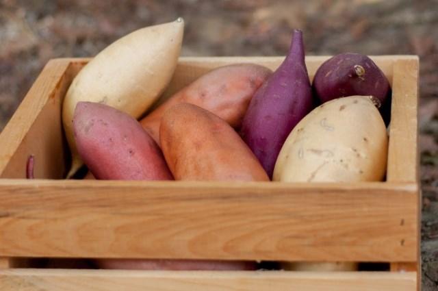 California Sweetpotatoes