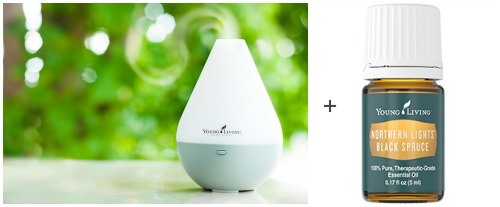diffuser & essential oil Holiday gift set